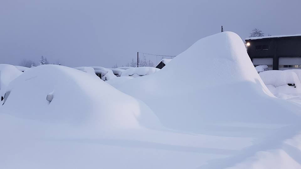 'Where's my car?' Cars at Snoqualmie buried by eight feet in the last week. (Summit at Snoqualmie/Facebook)